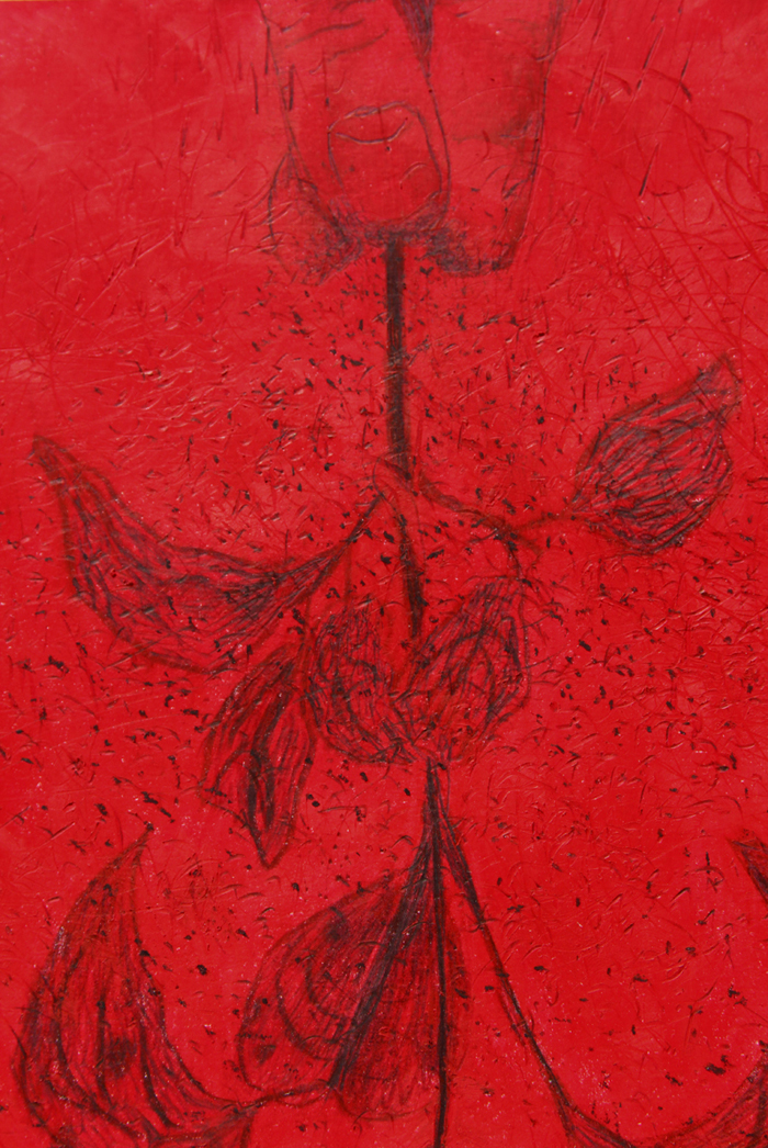 poussiere-detoiles-detail-bd